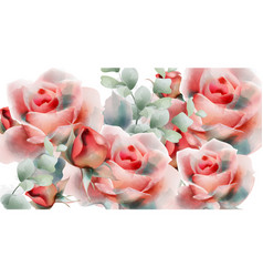 pink roses watercolor summer exotic floral vector image
