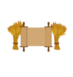 Scroll and sheaves of wheat on white background vector