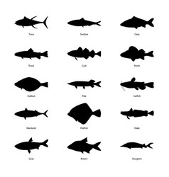 set of silhouettes of fishes vector image