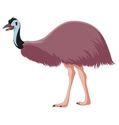 cartoon smiling emu vector image vector image
