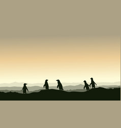 Collection stock penguin landscape on hill vector