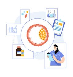 Embryo cell anatomy vector