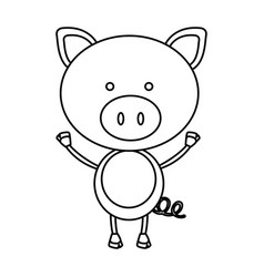 figure teddy pig icon vector image