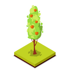 Green apple tree isometric 3d icon vector
