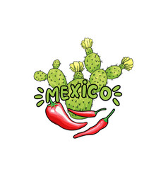 Mexico lettering with green letters and red pepper vector