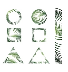 Jungle Palm Leaves Design vector image vector image