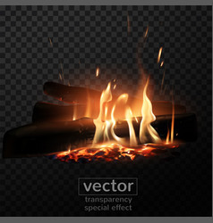 Burning fire in the fireplace firewood coals vector