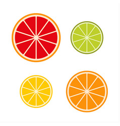 Collection of citrus slices grapefruit lime vector