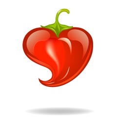 heart pepper vector image