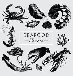 Seafood lovers pack vector