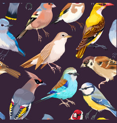 Seamless patterns with birds vector