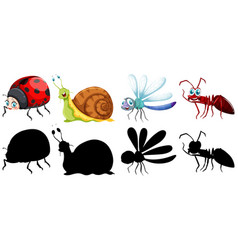 set insect character vector image