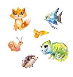 Watercolor set of little cute exotic pets vector
