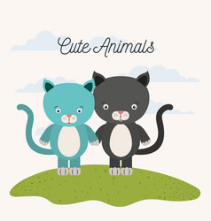 White background with color scene couple cute cats vector