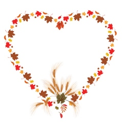 leaves of maple and ears as heart vector image