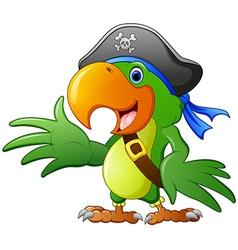 cartoon pirate parrot vector image