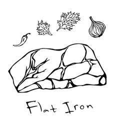 flat iron steak cut isolated on white vector image