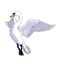Flying swan vector