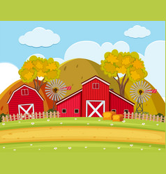 Road and field on the farm vector