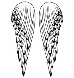 Wings angel vector