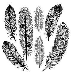 Set of ethnic feathers vector image vector image