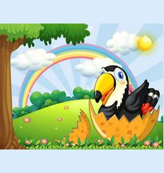 toucan bird hatching egg in garden vector image vector image