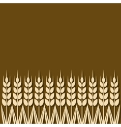 ripe wheat ears background vector image