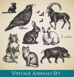 vintage animals vector image vector image