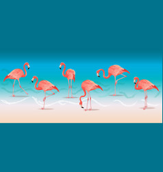 exotic pink flamingos walking on the hot summer vector image