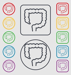 Large intestine icon sign symbol on the Round and vector