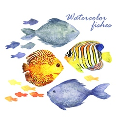 Watercolor fishes set vector