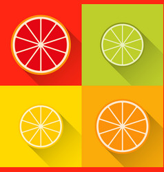 collection of citrus slices icons grapefruit vector image vector image