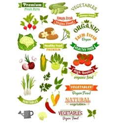 Vegetables isolated icons vegan ribbons set vector image vector image