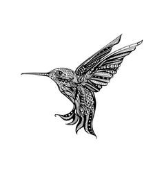 Flying hummingbird hand drawn art vector