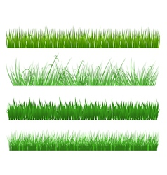 Green grass and field patterns vector