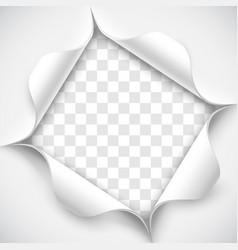 hole in white paper vector image