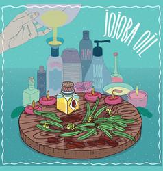 Jojoba oil used for cosmetics making vector