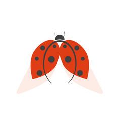 ladybird logo isolated on white background vector image