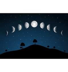 Moon Phases - Night Landscape with Trees vector