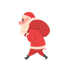 pig character in santa costume walking with red vector image