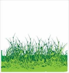 wild flower garden vector image vector image