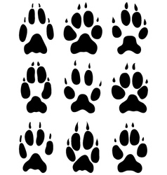 footprints of foxes vector image