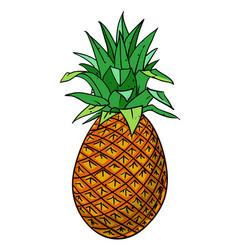 Cartoon image of pineapple vector