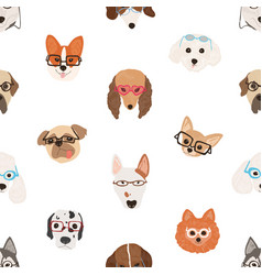 colorful seamless pattern with faces of dogs vector image