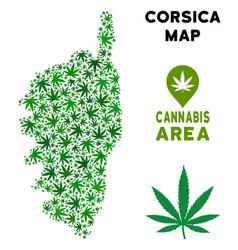 Marijuana collage corsica france island map vector
