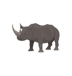 Rhinoceros african safari zoo hunt wild animal vector