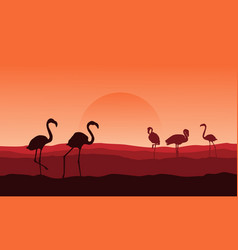 silhouette of flamingo on desert landscape vector image