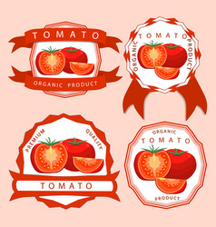 the theme red tomato vector image