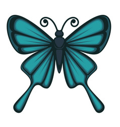 beautiful butterfly with big wings vector image