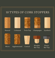 10 types of cork stoppers set in flat style vector image